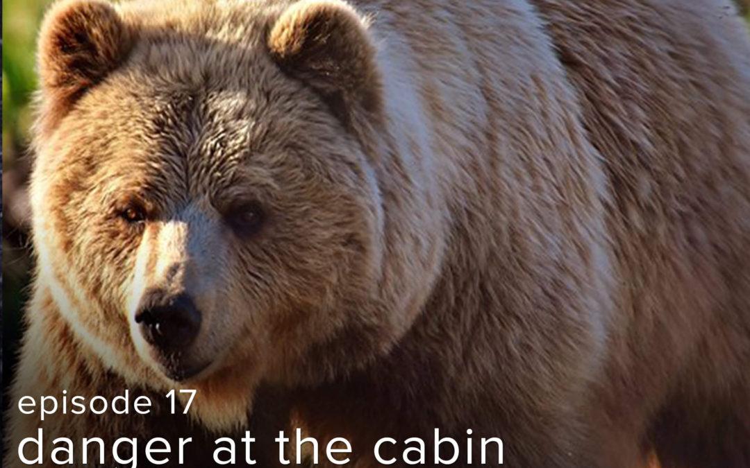 """Episode: 17 """"Danger at the Cabin"""""""